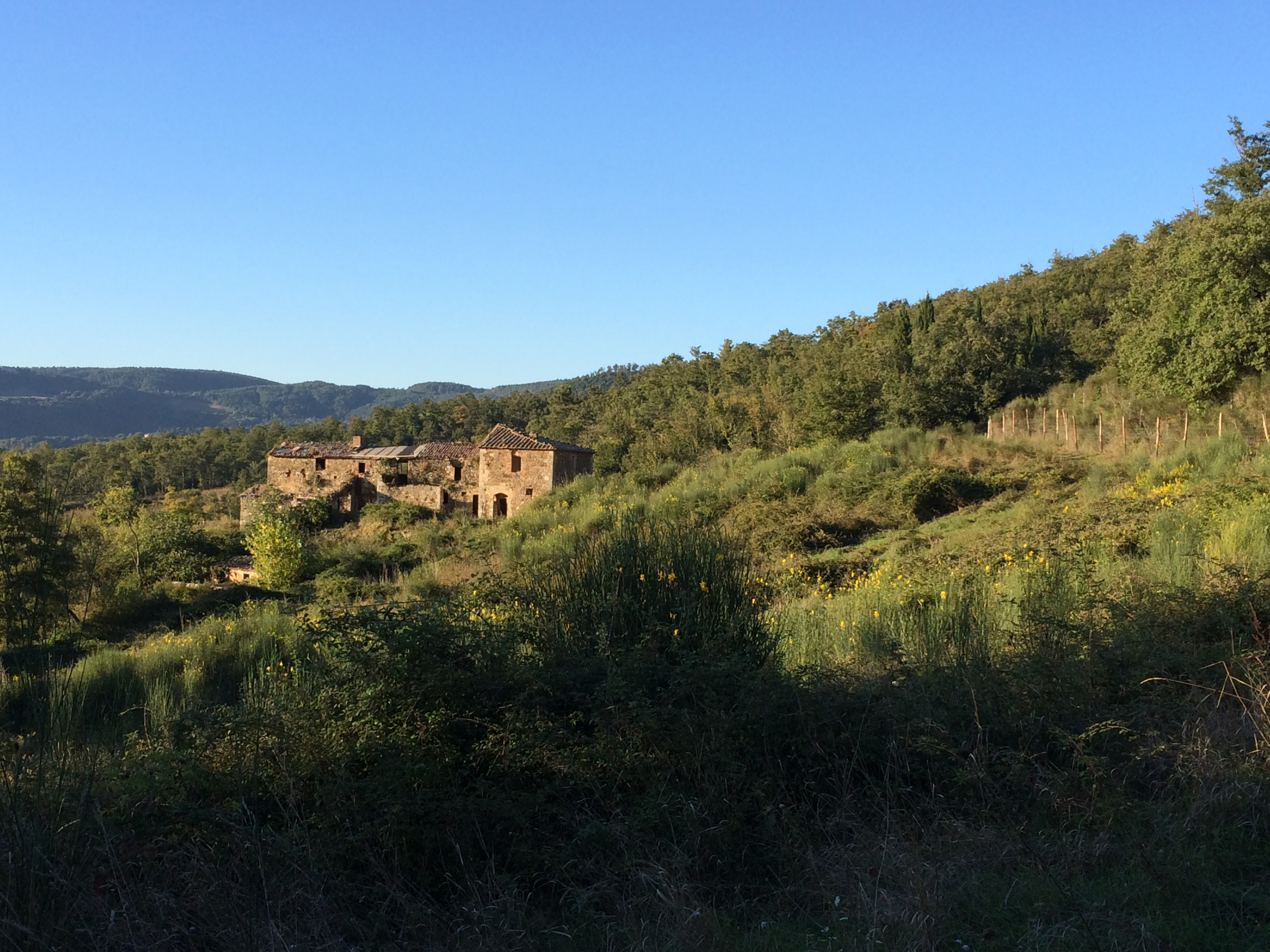 ruin in the orcia valley